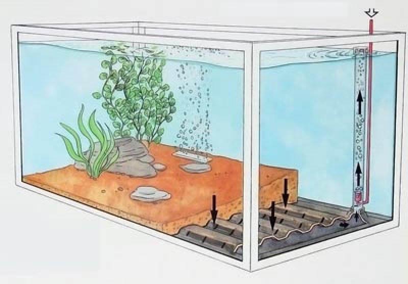 Сделать донный фильтр для аквариума своими руками