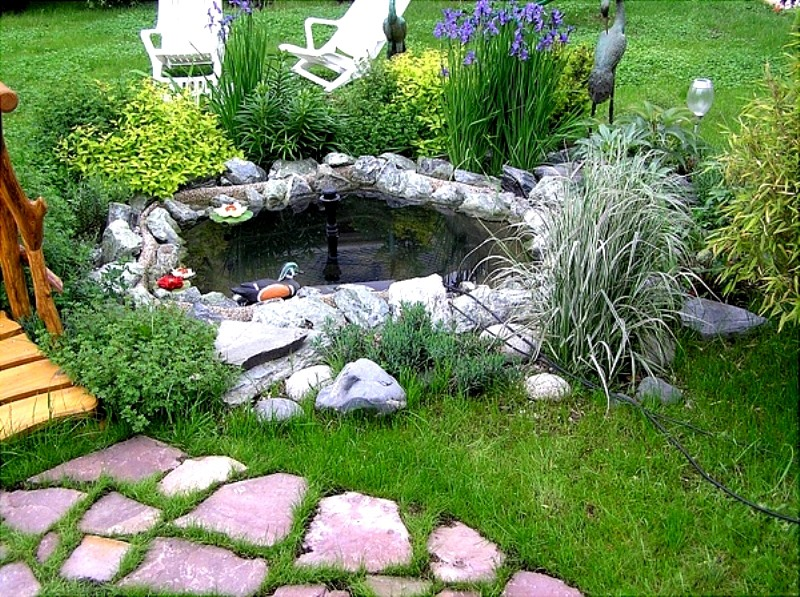 Маленькие водоемы в саду