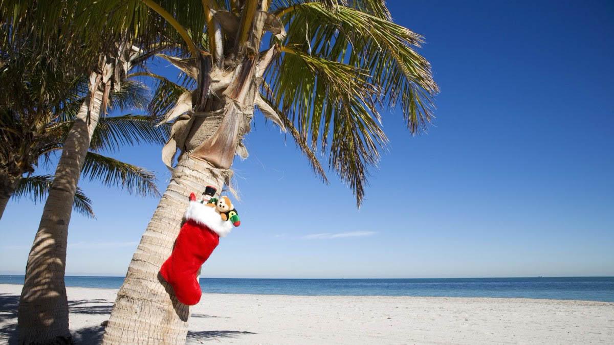 Куда поехать на новый год на море с ребенком